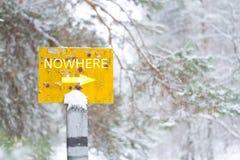 Un pointeur nul dans une for?t en hiver images stock
