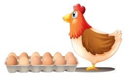 Un pollo y una bandeja de huevos ilustración del vector