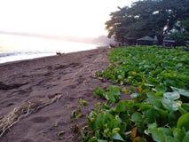 Un pomeriggio semplice alla spiaggia fotografia stock