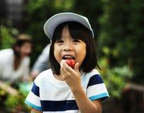 Un pomodoro eatting del ragazzo fotografia stock
