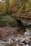Un pont au-dessus d'une crique en automne image stock