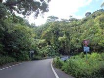 Un pont de ruelle avec le rendement au poteau de signalisation approchant Photographie stock