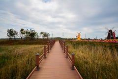 Un pont en bois dans un jardin de tulipe Photographie stock