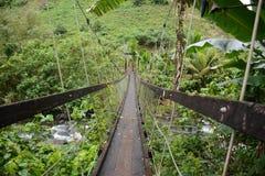 Un pont suspendu Image stock