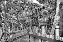Un ponte attraverso Fotografia Stock Libera da Diritti