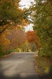 Un ponte attraverso il legno di caduta con i colori luminosi Fotografie Stock