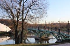 Un ponte attraverso uno stagno del ferro, la gente passa attraverso uno stagno Fotografia Stock Libera da Diritti
