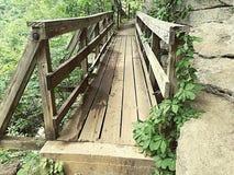 Un ponte che vi prenderà alle cadute Immagine Stock Libera da Diritti