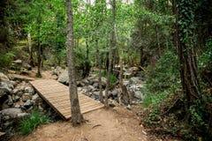 Un ponte di legno sopra un piccolo fiume su un modo alla cascata di Caledonia vicino a Platres Fotografia Stock
