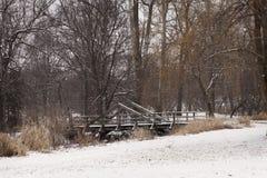 Un ponte nevoso nell'inverno Immagine Stock Libera da Diritti