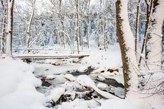 Un ponte sopra il fiume nella valle Immagine Stock Libera da Diritti