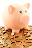 Un porcellino salvadanaio su un mucchio di euro centesimo conia Fotografie Stock