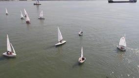 Un porto della barca a vela con tantissime barche a vela Porto di navigazione aereo archivi video