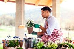 Un portrait de jardinier de jeune homme dehors ? la maison, plantant des fleurs images libres de droits