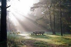 Un posto da riposare e mangiare. Fotografia Stock Libera da Diritti