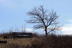 Un posto da sedersi fuori Fotografia Stock