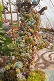 Un pote de flores coloridas Fotografía de archivo
