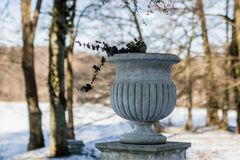 Un pote del jardín que se coloca en un parque Perennials y plantas en un pote imagenes de archivo