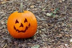 Un potiron amical et fantasmagorique de cric-o-lanterne se reposant sur le paillis brun dans la cour image stock