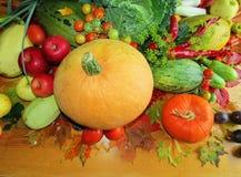 Un potiron et des légumes différents photos stock