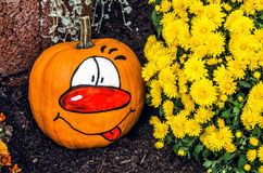 Un potiron peint pour Halloween près des chrysanthèmes jaunes Image stock