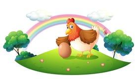 Un poulet avec un oeuf Photos libres de droits