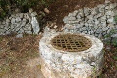 Un pozo antiguo cubierto por rejilla del hierro y la pared de piedra en un bosque Fotografía de archivo