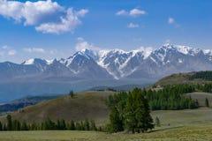 Un prado con la hierba verde enorme y los árboles coníferos que estiran delante del canto de piedra de picos coronados de nieve,  imagenes de archivo