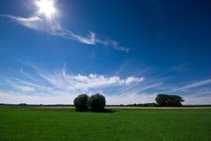 Un prado verde y un cielo asoleado, azul Fotos de archivo
