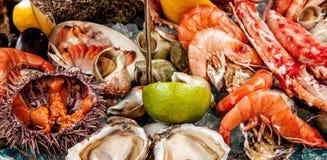 Un preparato dei frutti di mare Fotografia Stock