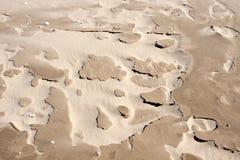 Un primer de la arena. Foto de archivo