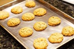 Un primer de una cacerola de galletas de harina de avena hechas en casa con una nuez inglesa en el top imagen de archivo libre de regalías