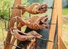 Un primo piano arrostito di tre corpi del maiale ha sparato, fuoco selettivo immagini stock