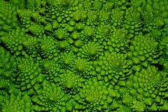 Un primo piano del cavolo verde Fotografie Stock