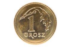 Un primo piano di 1 moneta polacca del grosz Fotografia Stock