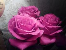 Un primo piano rosa di tre rose fotografia stock