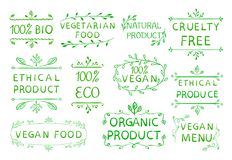 un prodotto etico di 100 vegani cruetly libera Elementi disegnati a mano d'annata Linee verde Fotografie Stock