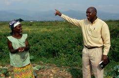 Un progetto di agricoltura nell'Uganda. Immagine Stock