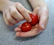 Un puñado de Cherry Tomatoes. Foto de archivo