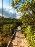 Un puente de balanceo hacia la selva y las montañas imágenes de archivo libres de regalías