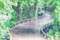Un puente de madera del camino del carro curva alrededor de árboles Fotografía de archivo libre de regalías
