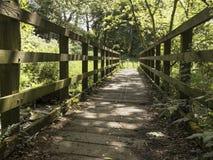 Un puente de madera que cruza una corriente en una escena del arbolado Fotos de archivo libres de regalías