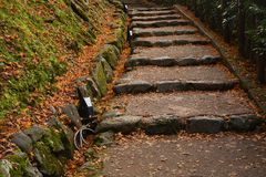 Un puente en un jardín japonés durante temporada de otoño Imágenes de archivo libres de regalías