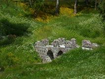 Un puente viejo de piedra en un parque entre las flores blancas y amarillas foto de archivo libre de regalías