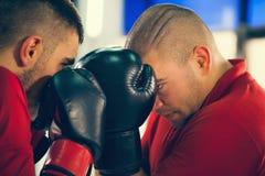 Un pugilato d'allenamento di due maschi Fotografia Stock Libera da Diritti