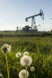 Un pumpjack da un campo erboso Fotografia Stock