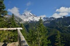 Traccia del parco dello spruzzo, parco nazionale del monte Rainier Immagine Stock Libera da Diritti