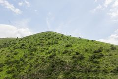 Un punto di vista delle montagne e dell'erba verdi, strade non asfaltate fotografie stock