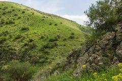 Un punto di vista delle montagne e dell'erba verdi, strade non asfaltate immagine stock libera da diritti