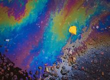Un punto iridescente Fotografia Stock